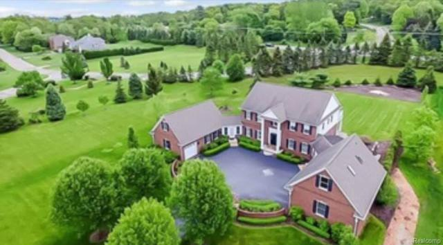 1385 Valley Crest Court, Milford Twp, MI 48381 (#217078896) :: RE/MAX Classic