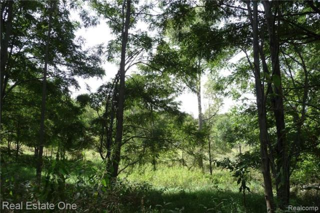 0000 Indian Camp Trail, Howell Twp, MI 48855 (MLS #217079129) :: The Toth Team