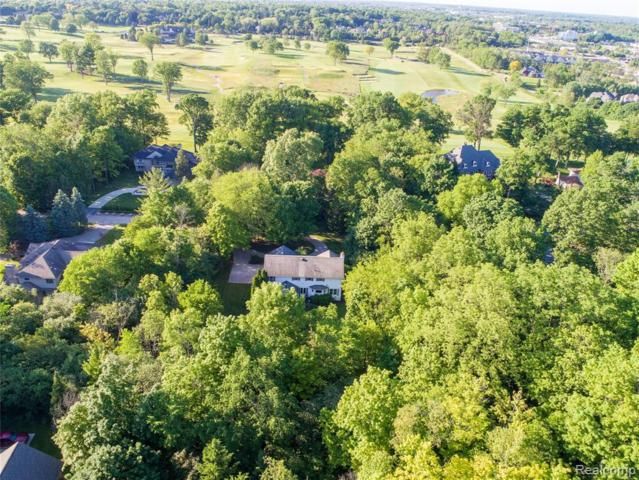 19849 Pierson Drive, Northville Twp, MI 48167 (#219048079) :: The Buckley Jolley Real Estate Team