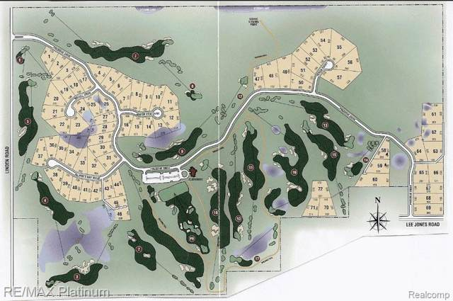 LOT 33 Palmers Way, Tyrone Twp, MI 48430 (#215018603) :: The Buckley Jolley Real Estate Team
