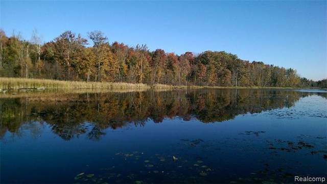 3131 Snoblin Road Road, North Branch Twp, MI 48461 (#2200068681) :: Real Estate For A CAUSE