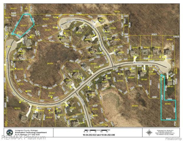 LOT 46 Painted Drive, Marion Twp, MI 48843 (#218047164) :: Alan Brown Group