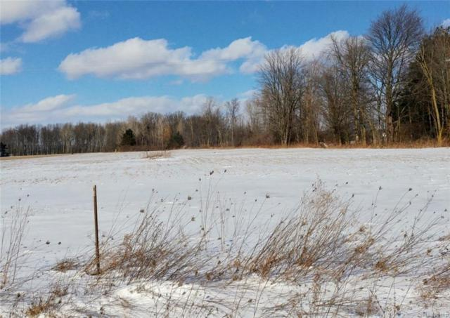 9162 Yager Road, Wales Twp, MI 48027 (#218089844) :: The Buckley Jolley Real Estate Team