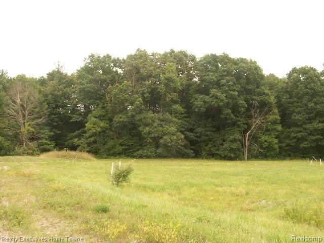 0000 Brace Road, Fort Gratiot Twp, MI 48059 (#2200058174) :: Keller Williams West Bloomfield
