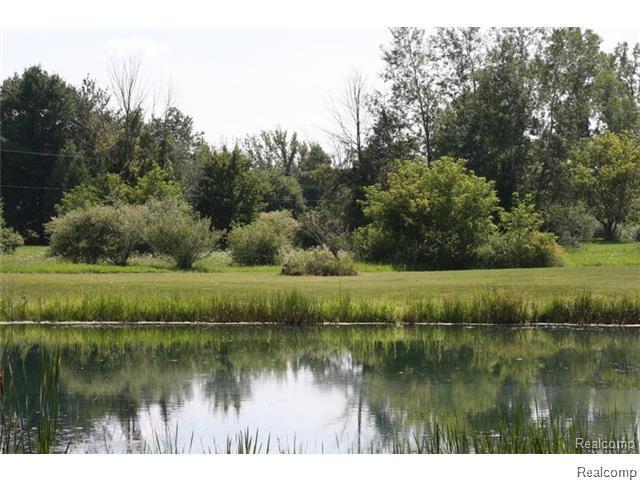 VAC Woodland, Hadley Twp, MI 48455 (#215027286) :: Metro Detroit Realty Team | eXp Realty LLC