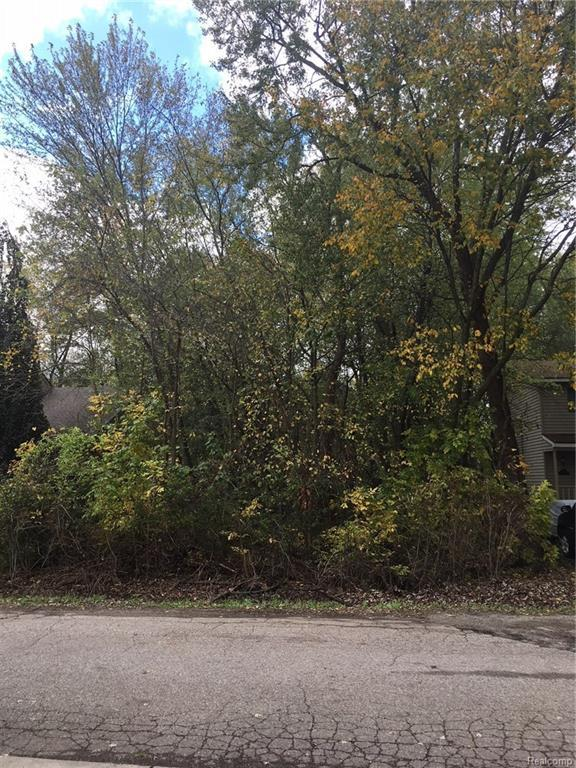 ### Charest, Waterford Twp, MI 48328 (MLS #217098282) :: The Toth Team