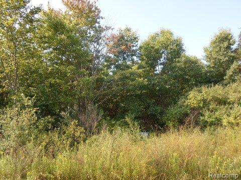 LOT 11 March View, Tyrone Twp, MI 48430 (#214087636) :: RE/MAX Classic