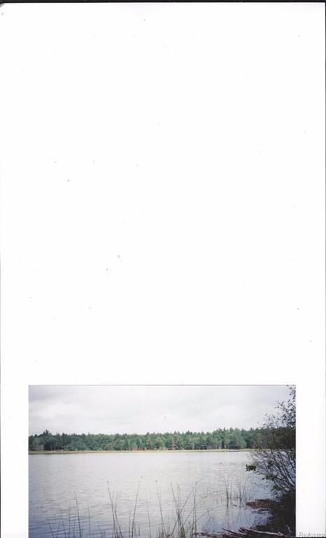 9999 Five Lakes, Livingston, MI 49735 (MLS #543250564) :: The Toth Team