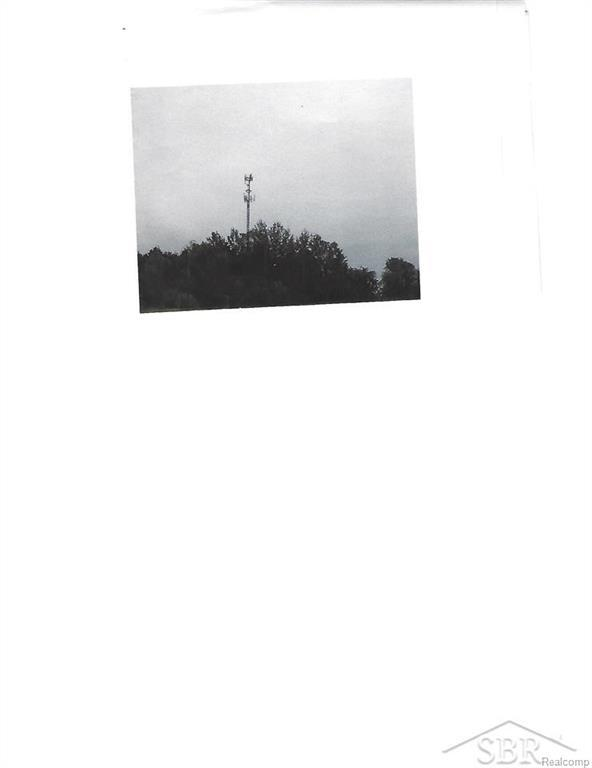 94 N Lewis Rd, SHEPHERD, MI 48883 (MLS #61031325487) :: The Toth Team