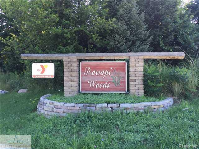 3148 Pawapi Lane (Lot H), Leroy Twp, MI 48895 (#630000084119) :: RE/MAX Vision
