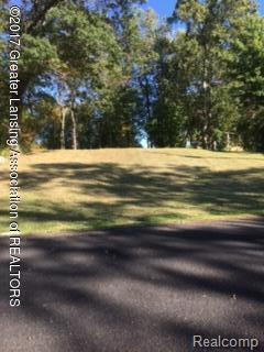 Lot 15&16 Oakdale Dr., Victor Twp, MI 48848 (MLS #630000220412) :: The Toth Team