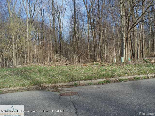 Lot 118 Williamsburg Road, Delta Twp, MI 48917 (MLS #630000219433) :: The Toth Team