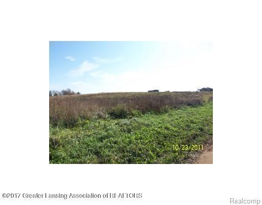 0 Spicerville Highway, Brookfield Twp, MI 48827 (MLS #630000220814) :: The Toth Team