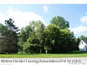 1609 Stauffer Lane, Dewitt, MI 48820 (#630000221453) :: Duneske Real Estate Advisors
