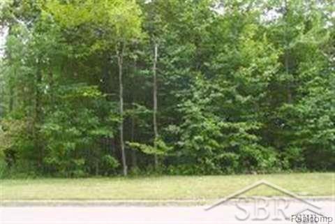 Beech Tree Lane Lot 9, Blumfield Twp, MI 48734 (MLS #61031337887) :: The Toth Team
