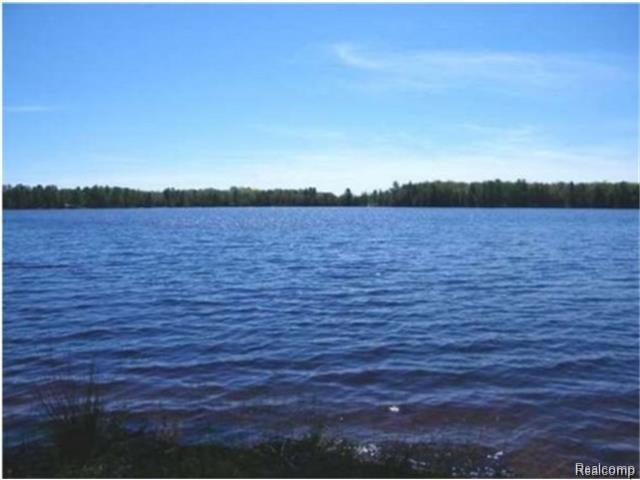 29889 Pike Lake Road, Elm River Twp, MI 49965 (#218007208) :: Simon Thomas Homes