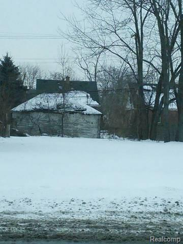 11696 Meyers Road, Detroit, MI 48227 (#218010811) :: RE/MAX Classic