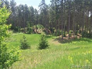 4635 Panorama Drive NW, Clearwater Twp, MI 49676 (MLS #218013208) :: The Toth Team
