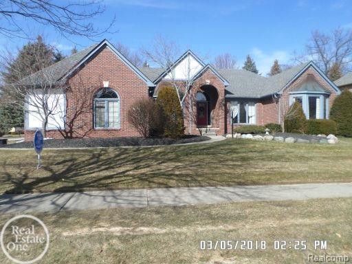 13419 Diegel Dr, Shelby Twp, MI 48315 (#58031341413) :: Duneske Real Estate Advisors