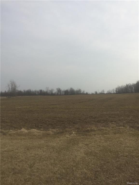 VL Van Dyke, Burnside Twp, MI 48416 (#218018387) :: Metro Detroit Realty Team | eXp Realty LLC