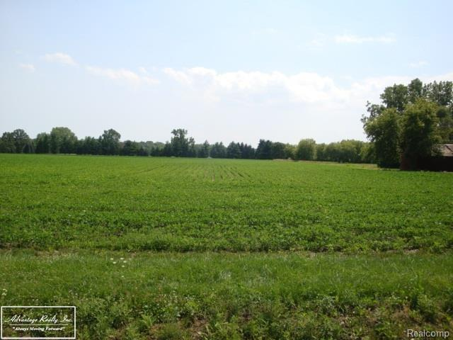 20510 31 MILE - PARCEL 1, Ray Twp, MI 48096 (MLS #58031341649) :: The Toth Team