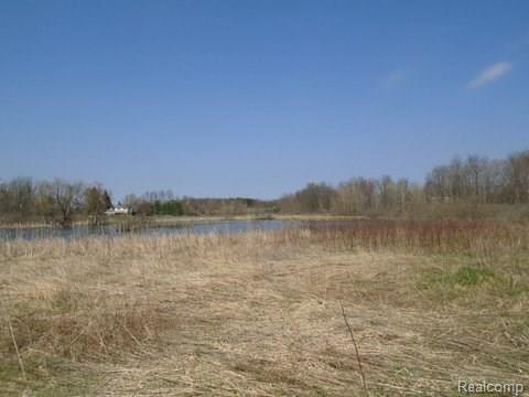 V/L Musson Road, Oceola Twp, MI 48855 (#218020428) :: RE/MAX Nexus
