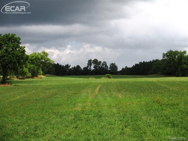 0 Lahring Road, Fenton Twp, MI 48451 (#5030072605) :: The Buckley Jolley Real Estate Team