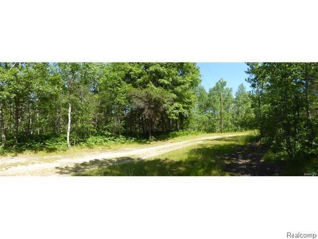 11275 Cherry Trail, Lovells Twp, MI 49738 (#218026346) :: Duneske Real Estate Advisors