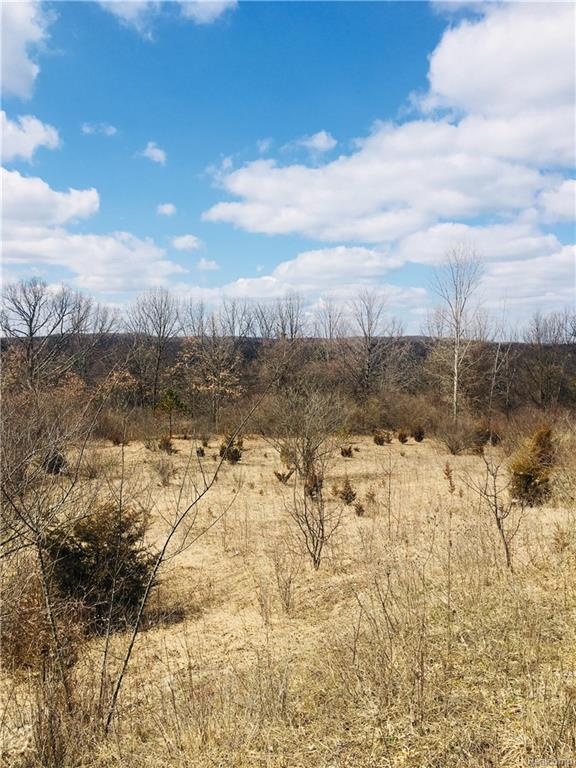 7807 Old Forest Drive, Independence Twp, MI 48348 (MLS #218028308) :: The Toth Team