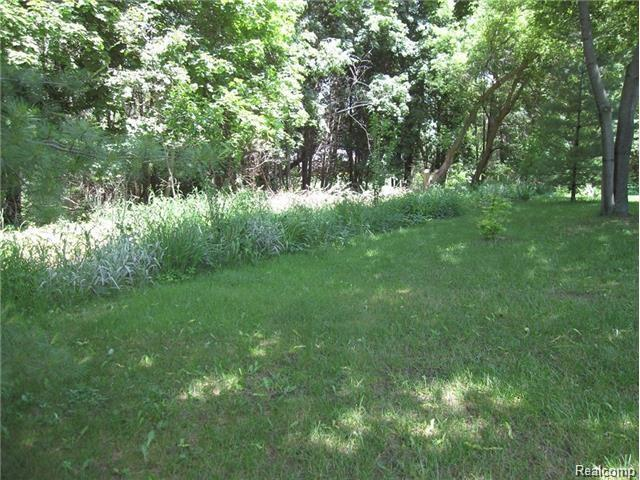 vacant Tipsico Lake Road, Hartland Twp, MI 48353 (MLS #218033598) :: The Toth Team