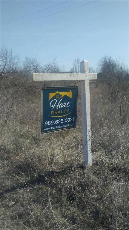 0000 Kelly Road, Mussey Twp, MI 48014 (#218035263) :: Duneske Real Estate Advisors