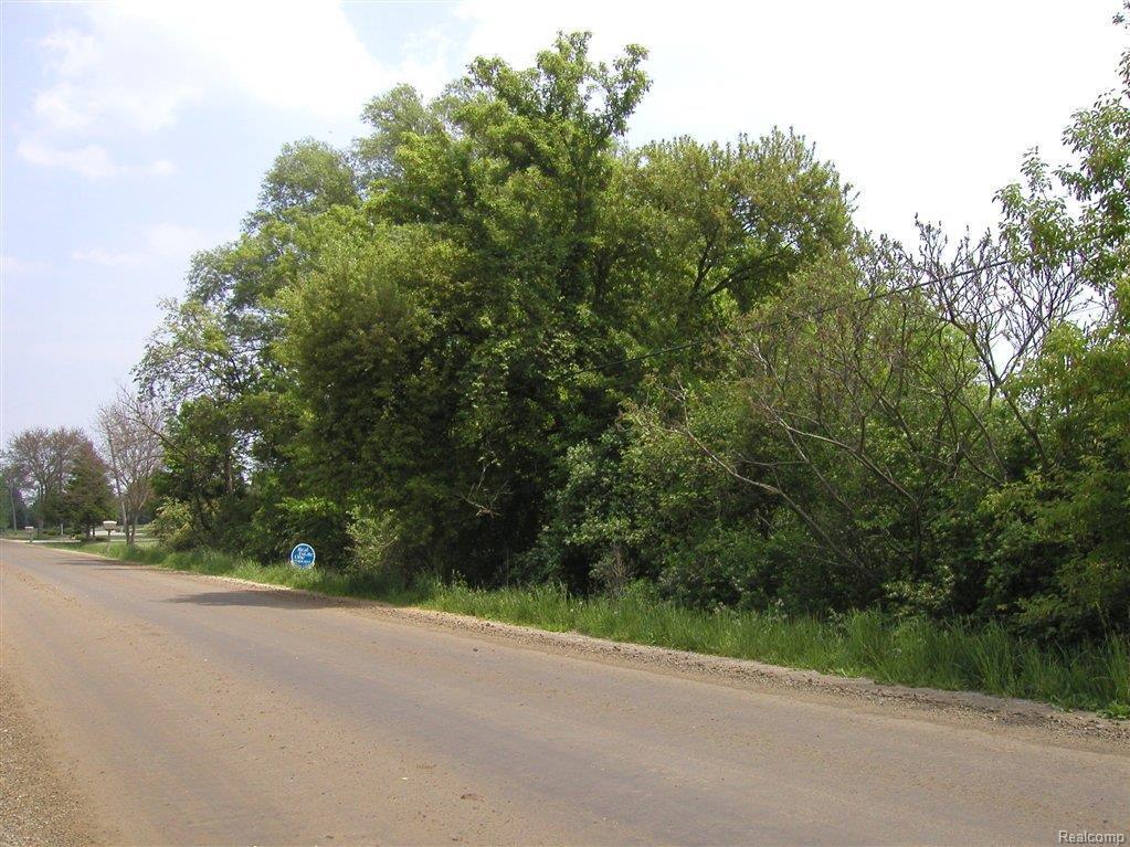 48819 Martz Road - Photo 1