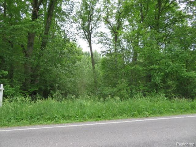 9139 Willow Road, Augusta Twp, MI 48191 (#543257361) :: Duneske Real Estate Advisors