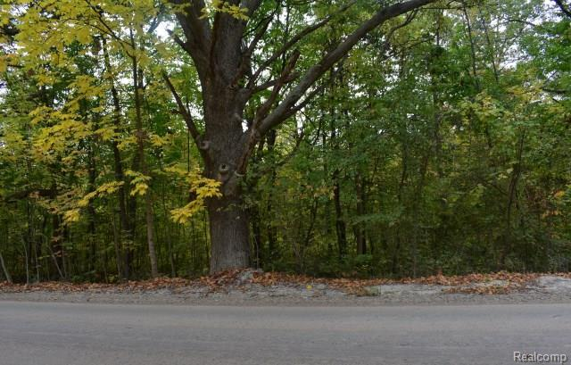 Parcel C Campground Road, Washington Twp, MI 48095 (#218049485) :: RE/MAX Classic