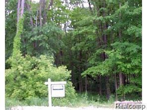 1078 Ravensview Trail, Milford Twp, MI 48381 (#218059064) :: RE/MAX Classic