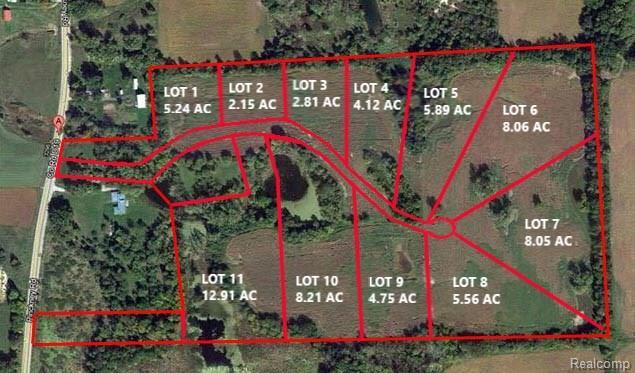 Lot 5 Chestnut Creek Drive, Marion Twp, MI 48844 (#218066441) :: The Buckley Jolley Real Estate Team