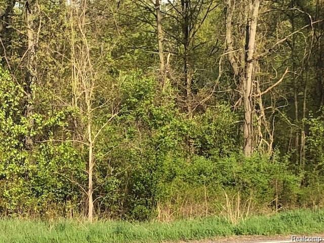 VL 2 North Milford, Highland Twp, MI 48356 (#218074011) :: RE/MAX Classic