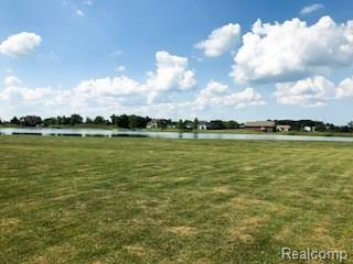 Lot 11 Bay Point Court, Imlay City, MI 48444 (#218078107) :: The Buckley Jolley Real Estate Team