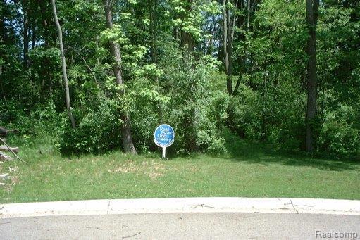1965 Laflamme Court, White Lake Twp, MI 48386 (MLS #218082483) :: The Toth Team