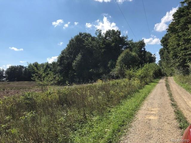 2905 N Lake Pleasant Road, Arcadia Twp, MI 48446 (#218084444) :: The Buckley Jolley Real Estate Team