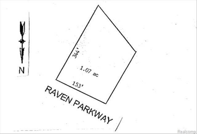 999 Raven Parkway, Monroe Twp, MI 48161 (#57020374064) :: Duneske Real Estate Advisors