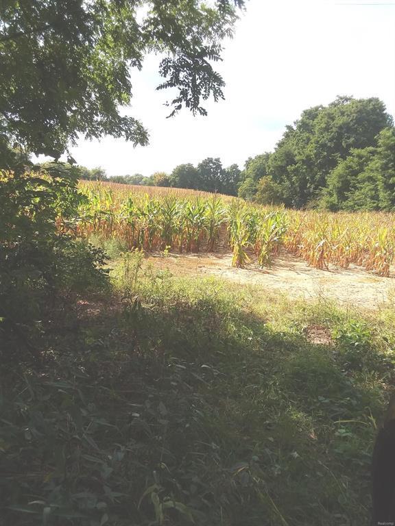 0 Kalmbach Road, Sylvan Twp, MI 48118 (#543260298) :: The Buckley Jolley Real Estate Team