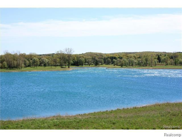 Parcel A Dixie Hwy, Groveland Twp, MI 48442 (#218111126) :: The Buckley Jolley Real Estate Team