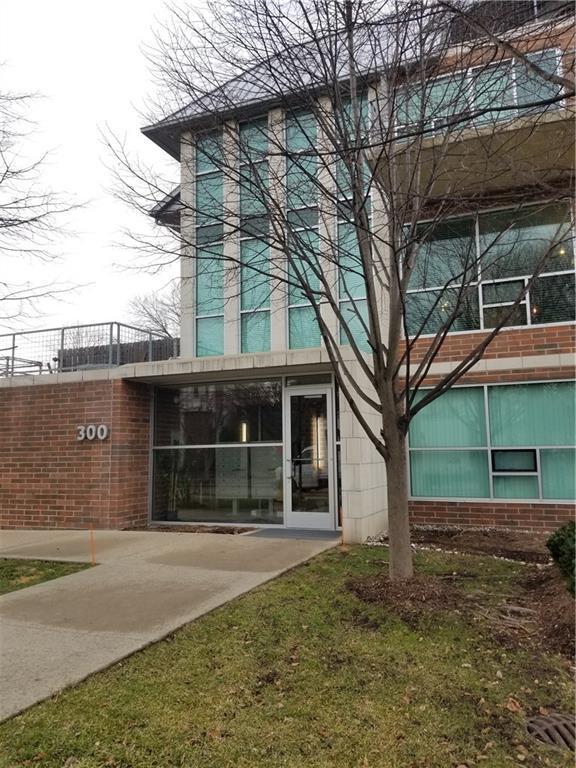 300 Hamilton Street #206, Plymouth, MI 48170 (#219002371) :: Duneske Real Estate Advisors
