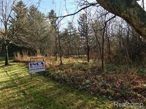 9031 N Island Drive, Flushing Twp, MI 48433 (#219004223) :: The Buckley Jolley Real Estate Team