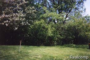 27416 Sunnydale Street, Livonia, MI 48154 (#219006285) :: The Buckley Jolley Real Estate Team