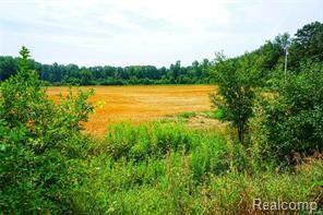 7052 Groveland Road, Groveland Twp, MI 48442 (#219010551) :: The Buckley Jolley Real Estate Team