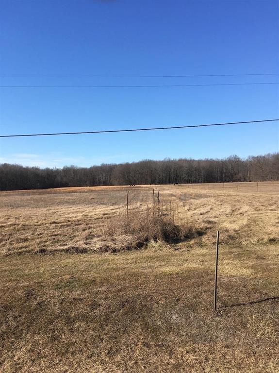 1 Tuttlehill Road, London Twp, MI 48160 (#543262723) :: RE/MAX Nexus