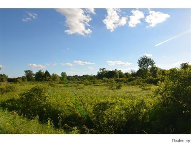 Vacant Rattalee Lake Road, Rose Twp, MI 48430 (#219014199) :: The Buckley Jolley Real Estate Team