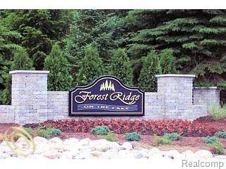 LOT 2 Oak Forest Drive, Green Oak Twp, MI 48178 (#219021871) :: The Buckley Jolley Real Estate Team